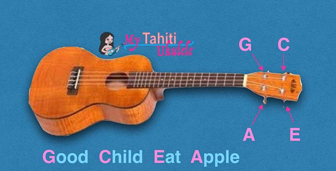 Accorder son ukulele